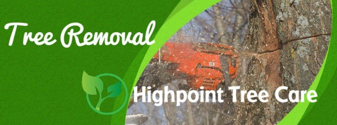 Highpoint Tree Care - profile image