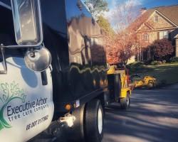 Executive Arbor Tree Care