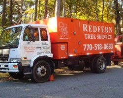 Redfern Tree Service