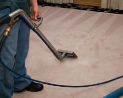 Austin's Young Carpet Cleaning & Repair