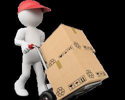 Fridrich Moving