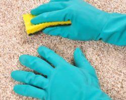 Total Carpet Care