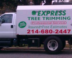 Express Tree Trimming
