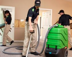 Servpro of Park Cities