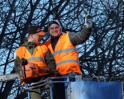 Arbortec Tree Service