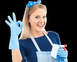 Lone Star Maid Service