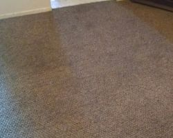 Clean Up Carpet Care