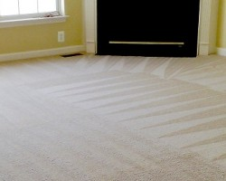 Carlos Carpet Cleaning