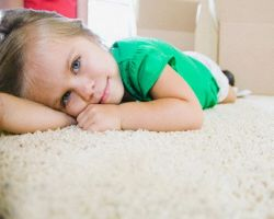 Shook Carpet Cleaning