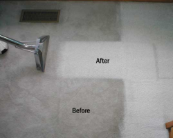 Carol Kings Cleaning LLC