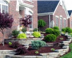 AAA Tree and Landscaping