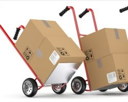 Samonas Prime Moving and Storage Inc