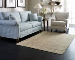 ACE Rug and Furniture Cleaning Co. Inc.