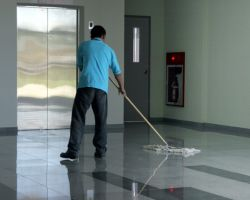 LB Cleaning Services