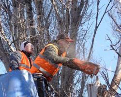 Helkes Tree Service