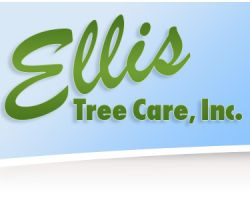 Ellis Tree Care