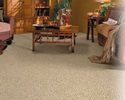 Personal Touch Dry Carpet Care