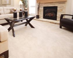 Veteran Carpet Cleaning Service