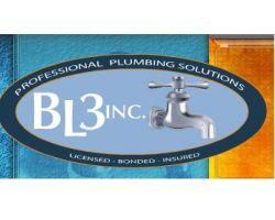 BL3 Inc.