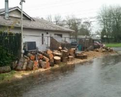 Eduardos Tree Service LLC