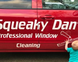 Squeaky Dan's Window Cleaning