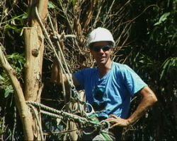 Arbor Works Tree Service