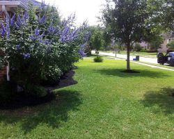 Plantation Irrigation & Landscaping