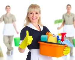 Fresh Maid Services