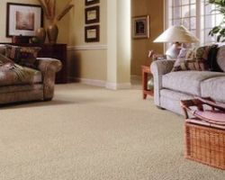Quality Assurance Carpet Care
